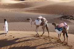 R-Maroc_Erg.Chebbi_02